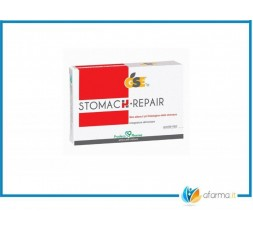 GSE STOMACH REPAIR 45 COMPRESSE