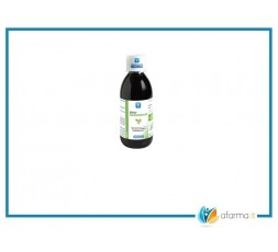 Ergydesmodium Nutergia 250 ml